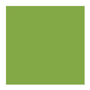 Работают 100 дней
